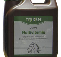 "MULTIVITAMIN ""Vimital""  fr Globus"